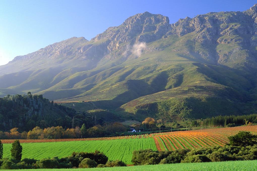 ⓬ Stellenbosch