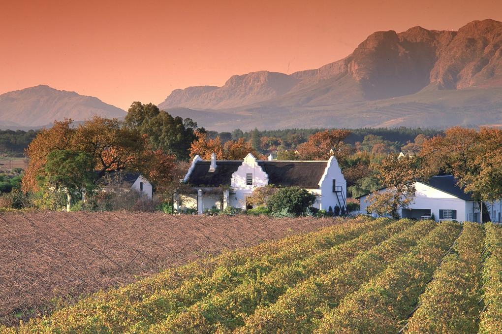 ⓬ Kaapse wijnlanden
