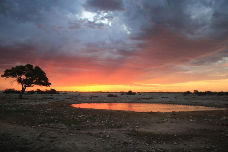 Zonsondergang in Okaukuejo - zo mooi kan alleen moeder natuur het maken!