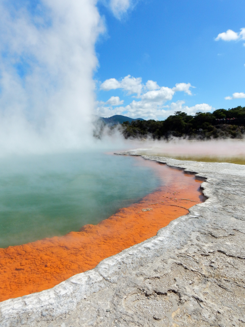 """The key to what you see lies below the surface"" - Rotorua, New Zealand."
