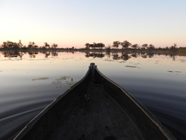 Back to basic in the Okavango Delta.