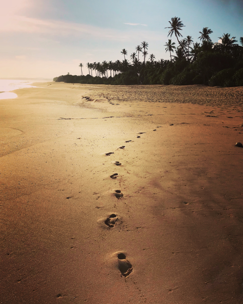 Take nothing but memories, leave nothing but footprints