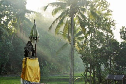 Discovering the beauty of Bali when walking to Gunug Kawi Temple, Indonesia