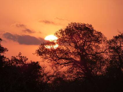 Wondermooie zonsondergang - Kruger  2016