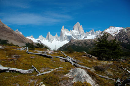 Lente in Los Glaciares National Park