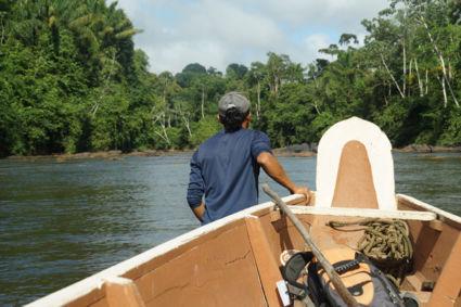 Amazonegebied met inheemse