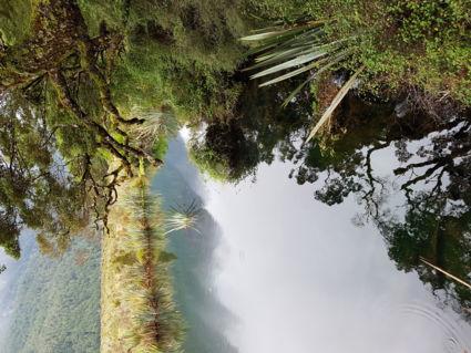 Water als spiegel
