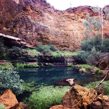 The perfect blue pool in the red outback