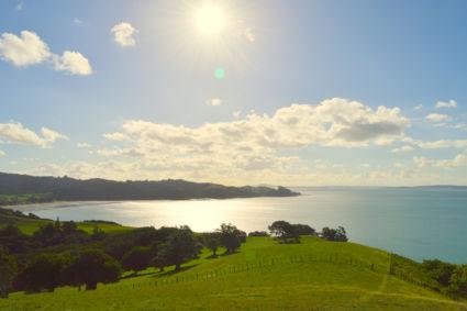 Duder Regional Park - Whakakaiwhara Pa Walk