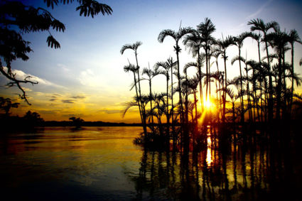 Zonsondergang Cuyabena Amazone Ecuador