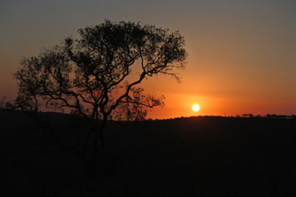 Sunset at Hluhluwe park
