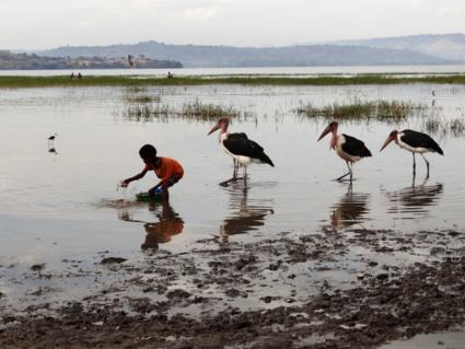 Lake Awasa. Jongetje vist met de hand en de maraboes als concurenten
