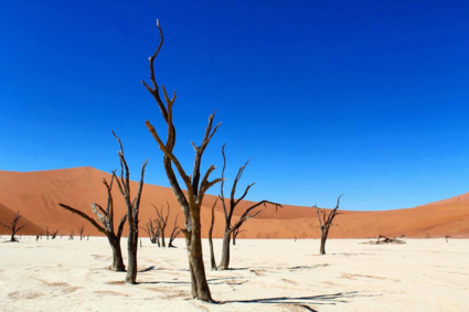 The beauty of the deadvlei - Namibia 2017