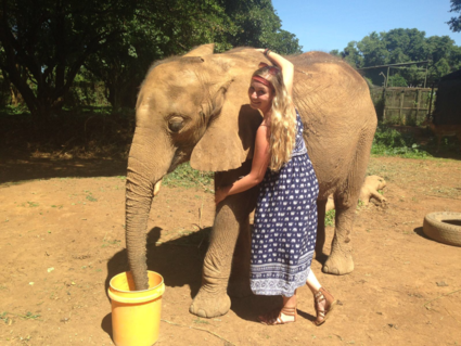 Een echt Knuffelolifantje !