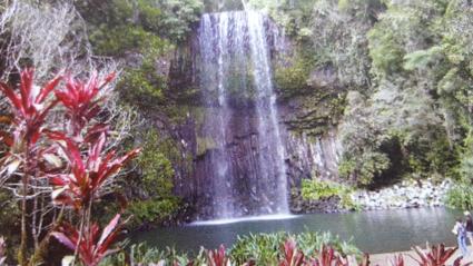Prachtige Millaa Millaa Falls