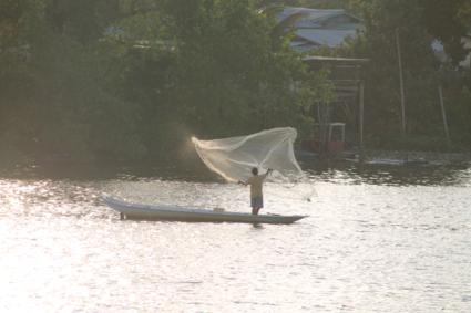 Visser in Sarawak River, Kuching