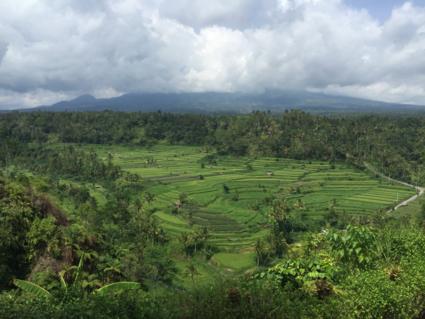 Super uitzicht vanaf een restaurant in Bali