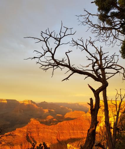 Zonsondergang Grand Canyon