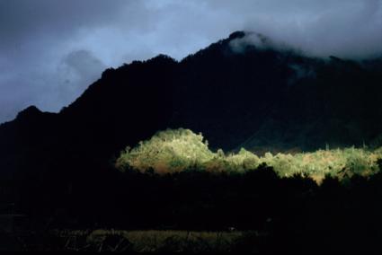 Na regen kwam zonneschijn in Pueyehue Nationaal Park