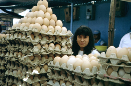 Eieren voor je geld kiezen