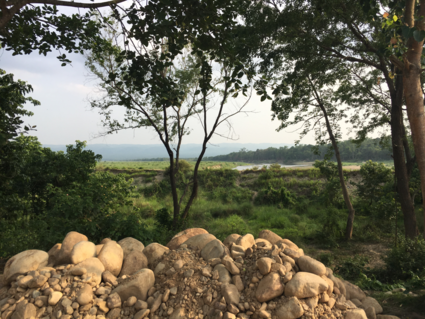 The edge of the mystical jungles of chitwan