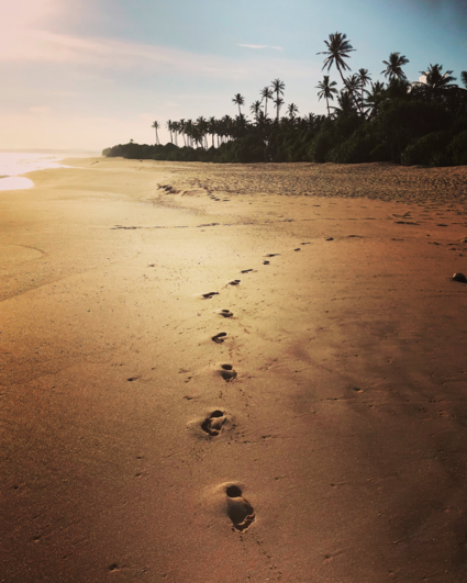 Take nothing but memories, leave nothing but footprints