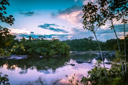 Zonsondergang in de surinaamse jungle